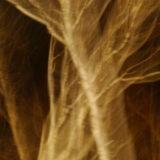Baum2_impressionistisch