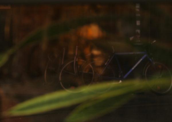 Fahrräder_gespiegelt
