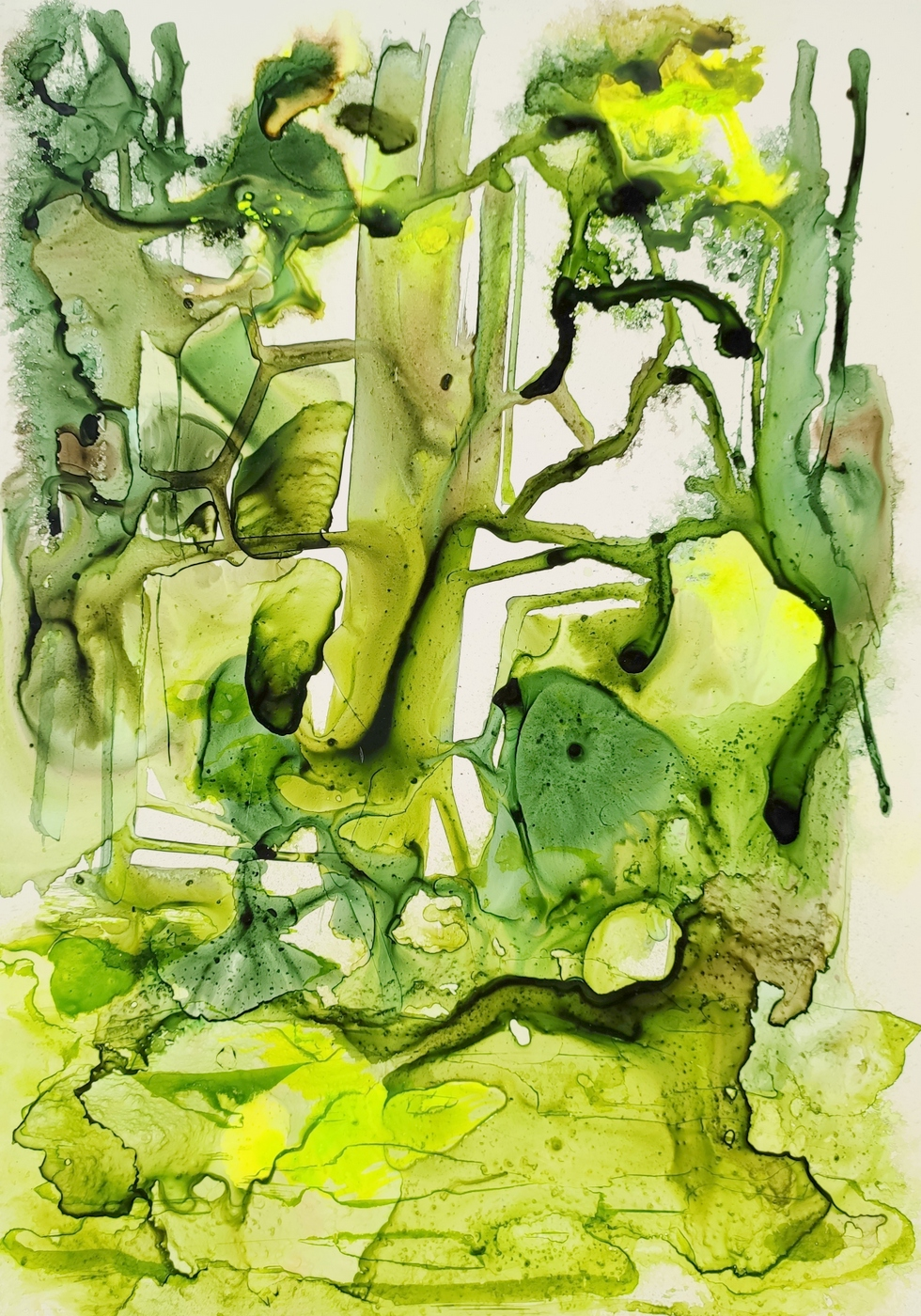 Trees in Ink 2 2019 Ink on Paper © Christiane Weismüller